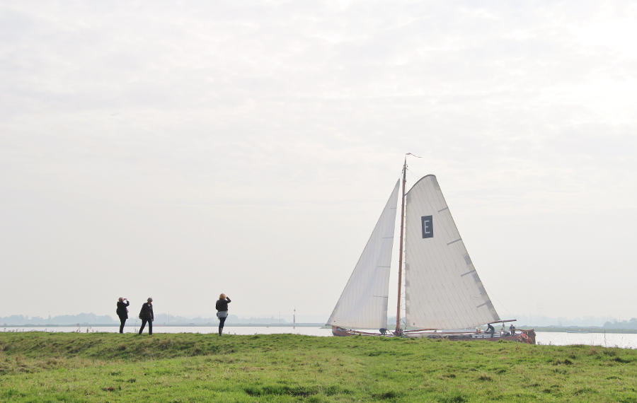 or-training De Kluut Flevoland Vernieuwing van de medezeggenschap Schateiland